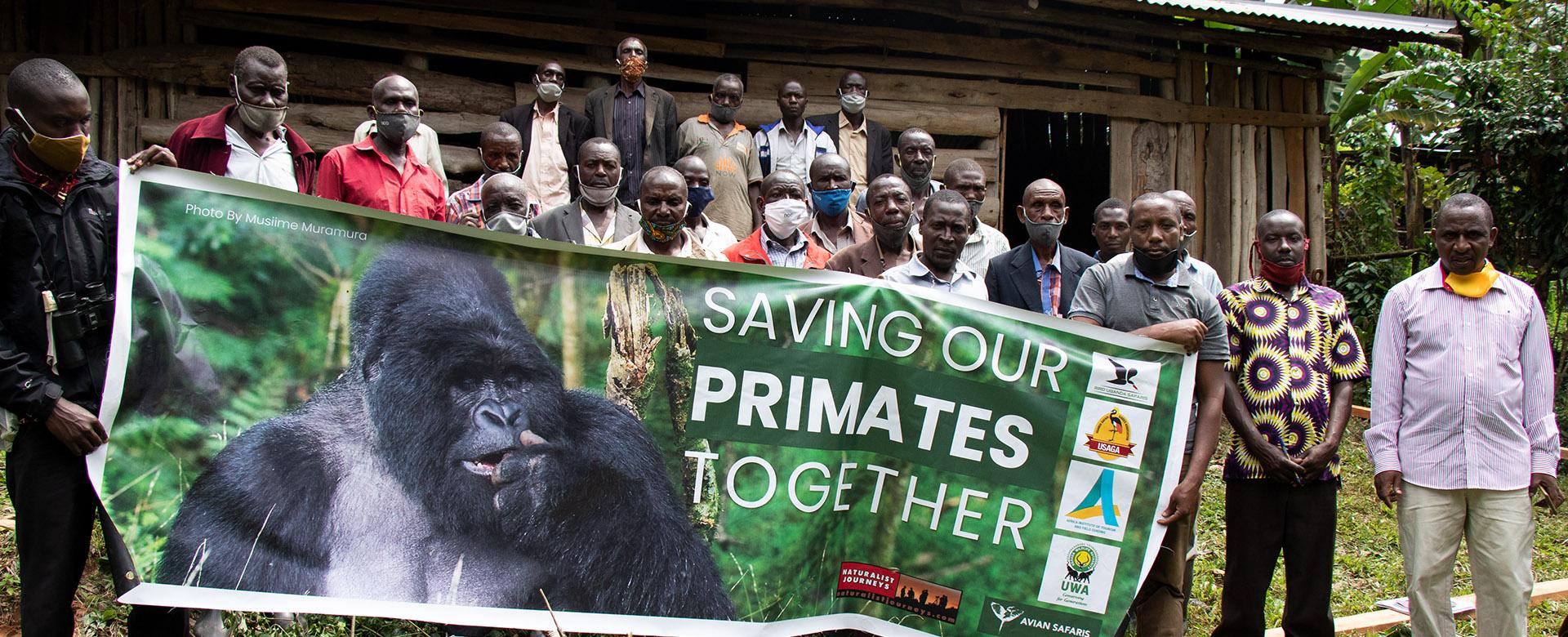 Saving-Primates-Campaign